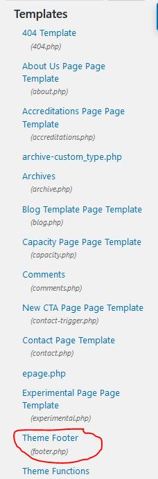 WordPress Footer in Editor